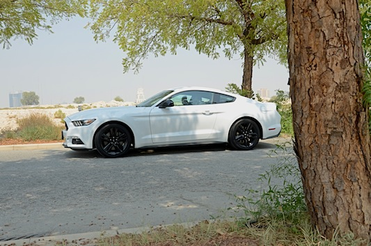 Ford Mustang Ecoboost profile view