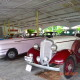 Royal rides Ahmedabad