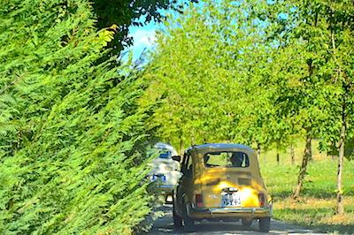 fiat 500 Tuscany rear